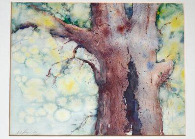 Gespaltener Baum 60x50