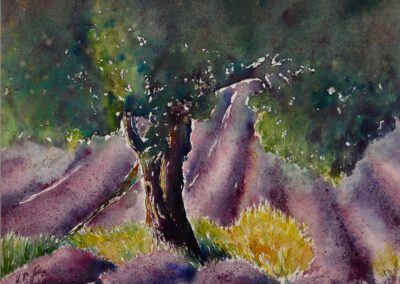 Lavendel 42x32 cm