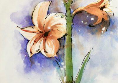 Lilien 29x41 cm